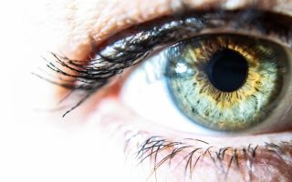 Центральная гетерохромия глаз: опасная патология или пикантная особенность?