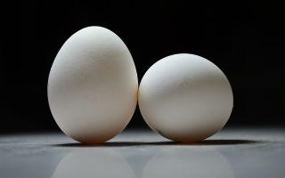 Можно ли греть ячмень на глазу яйцом, синей лампой, ходить с ним в баню