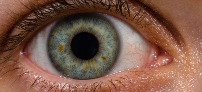 Ангиоспазм сетчатки глаза: что это такое, симптомы и лечение
