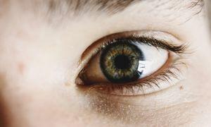 Профилактика глаукомы глаз: как предотвратить опасную болезнь?