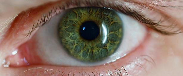 здоровый глаз на фото