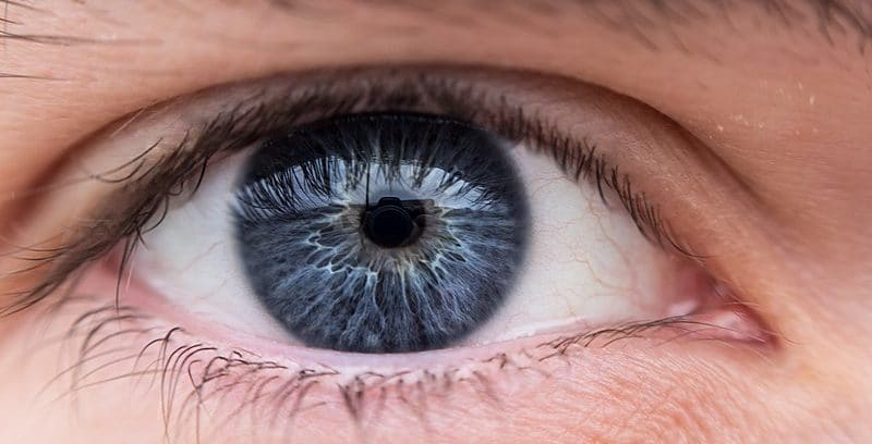фото глаза