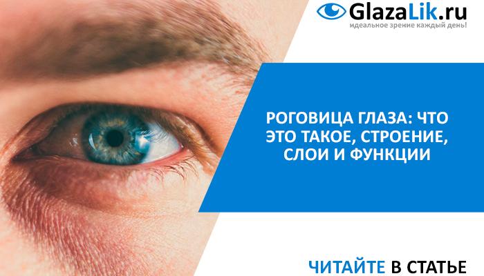 роговица глаза человека