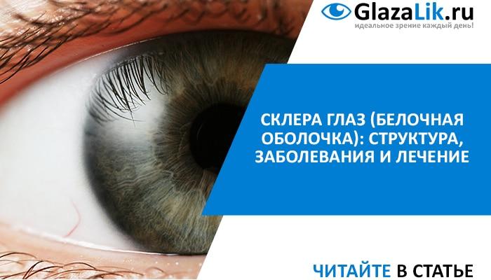 что такое склера глаз